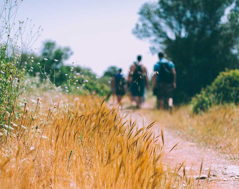 People walking in the countryside